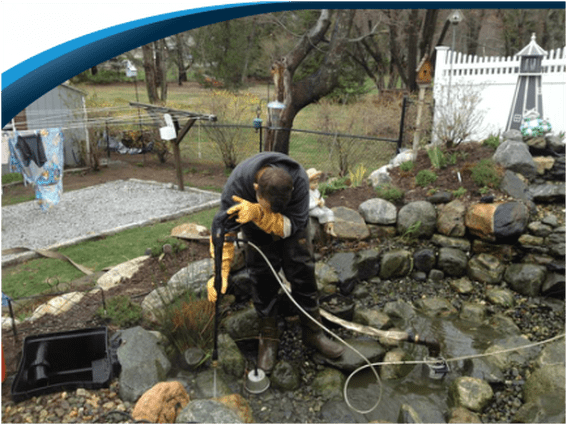 Professional Pond Cleaning & Maintenance Services